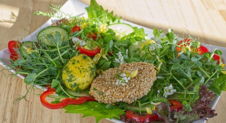 Salat mit Erbsengrünkraut